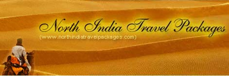 wildlife tour packages to north india
